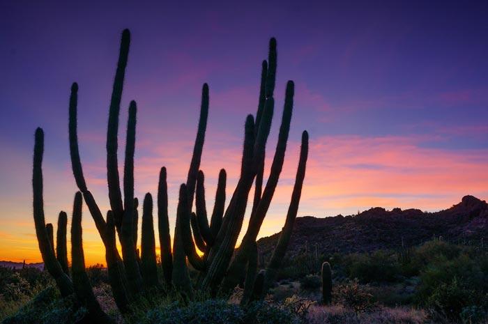 راهنمای مبتدیان برای استفاده از نور طبیعی در عکاسی منظره