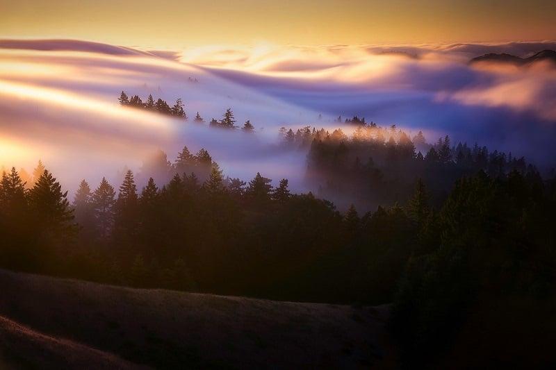 آموزش عکاسی از مه
