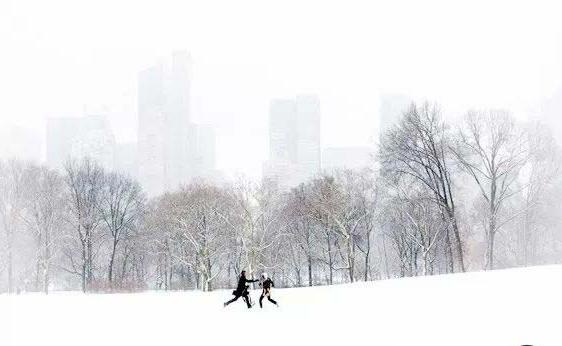 چگونه در برف عکس های زیبایی بگیریم؟