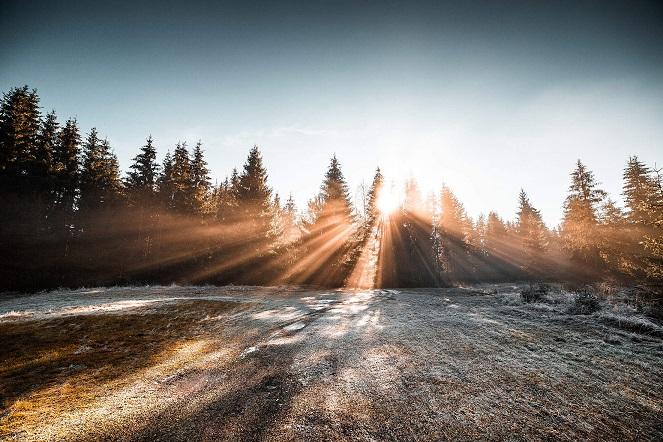 انواع نور درعکاسی چگونه است؟