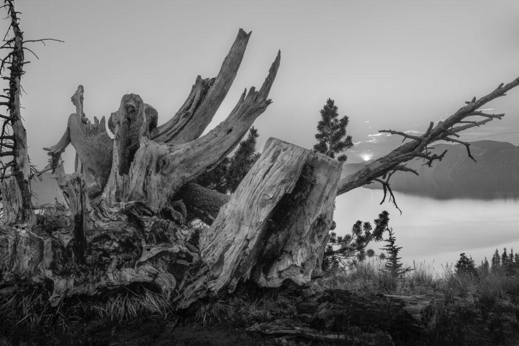 ده چیزی که به عنوان عکاس در ده سال یاد گرفتم